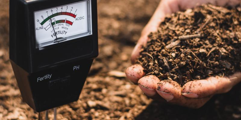 ph meter in soil with person holding soil in hand